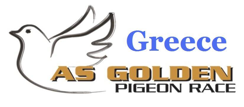 greece race banner